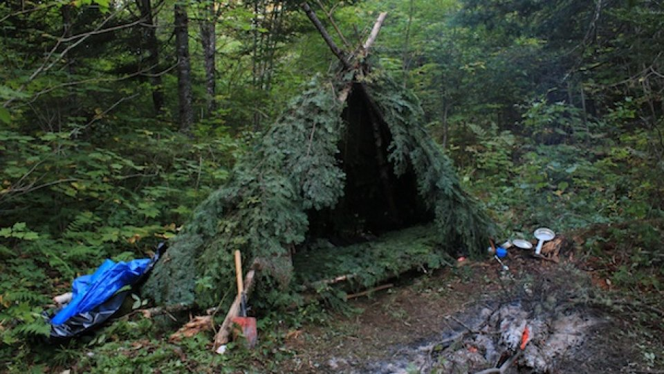 Seven Points For Beginning Bushcraft