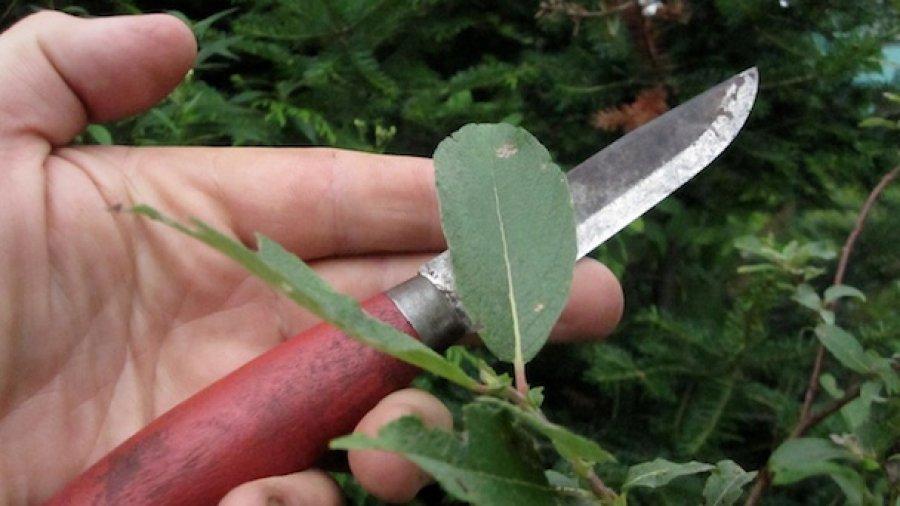 Bushcraft Knife Hype