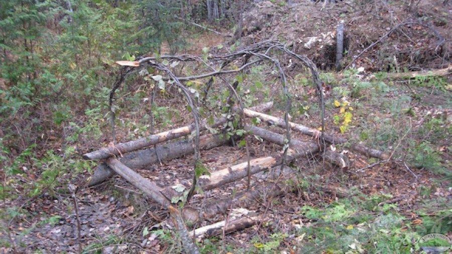Spring 2014 Wilderness Bushcraft Semester Full