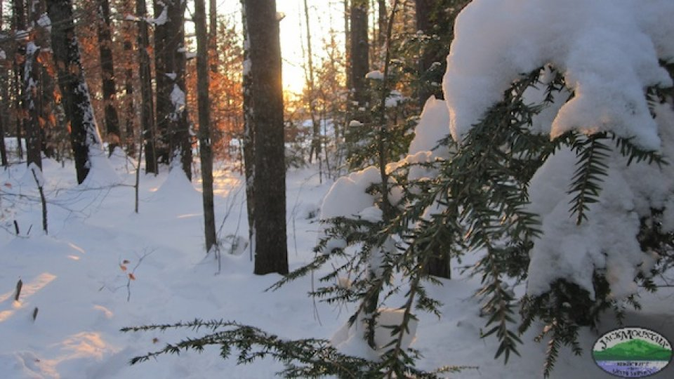 2015 Winter Preview: Bushcraft, Survival And Expedition Programs