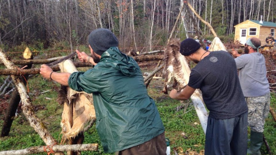 Scraping deer hides to start the braintanning process