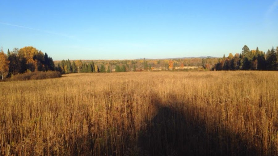 Looking east toward New Brunswick from the field school on a beautiful fall afternoon