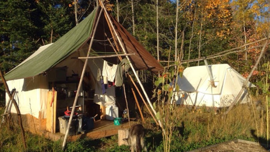 Wall tents in late afternoon sunlight