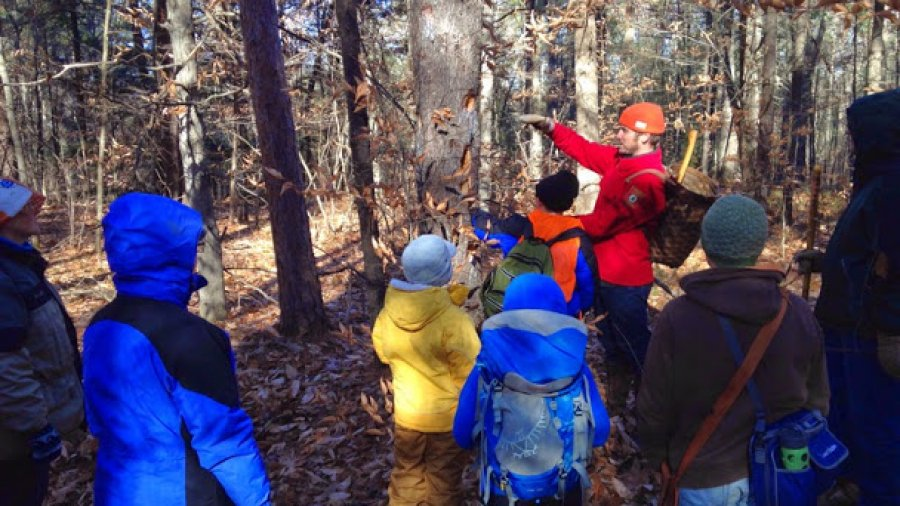 What woodpecker made this hole? Tom teaching at the School Of The Forest