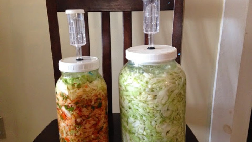 Fermented Foods Yes, Giardia No