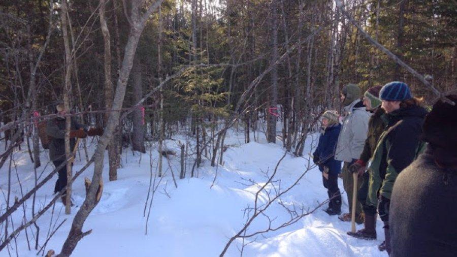 Axe class, winter woodsman