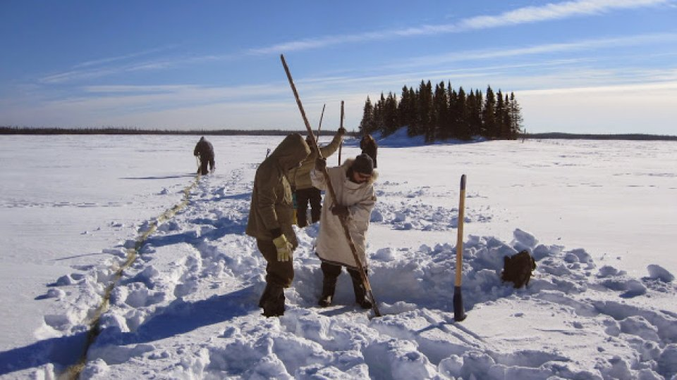 Chiseling a series of holes in order to set a fish net under the ice