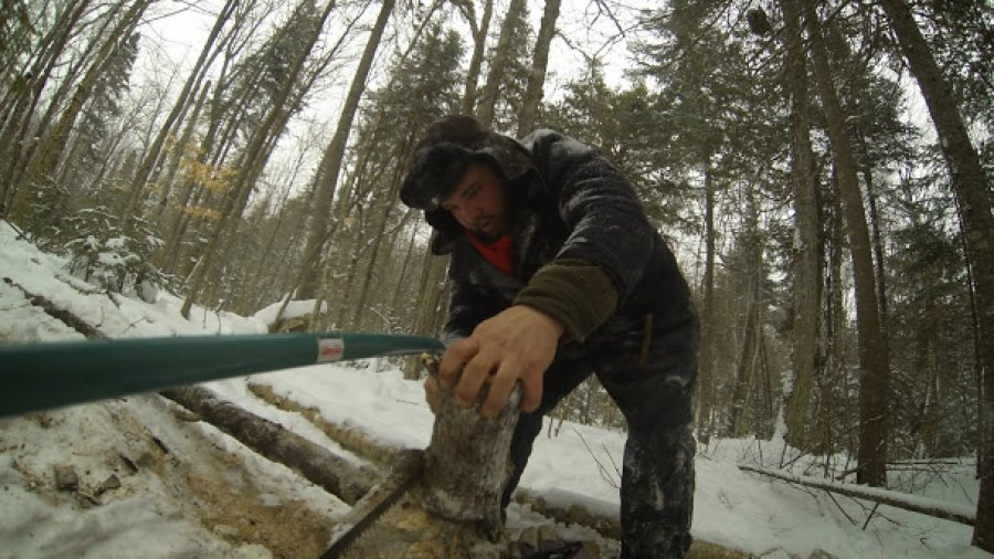 Sawing Up Firewood