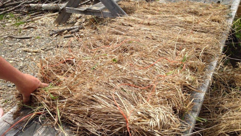 Making grass mattresses