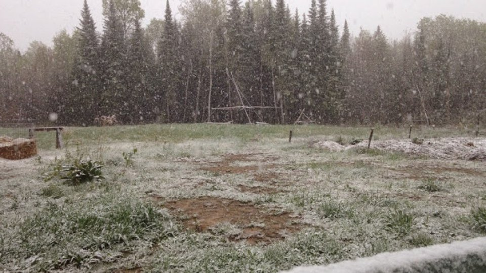May 23, snowing hard and fast in Masardis