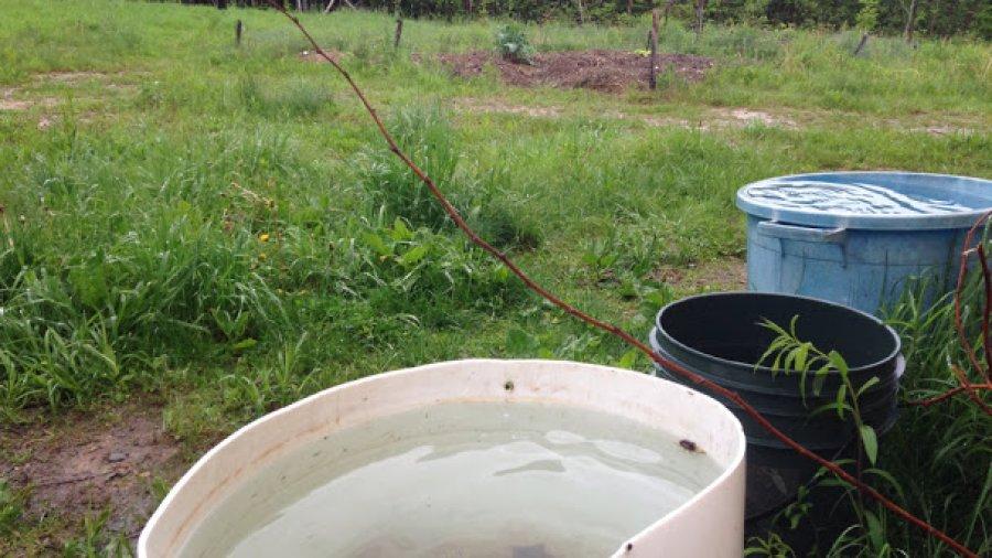 Full rain buckets, 2nd day of rain