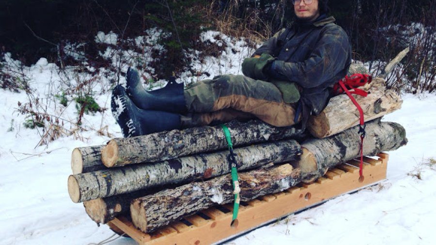 Hauling firewood on the money sled