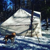 Six Weeks On The Trail This Winter