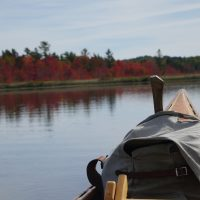 Flaming Red Maples From The Canoe-   JackMtn.com