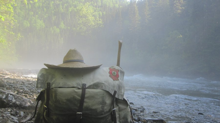 Pack In The Mist