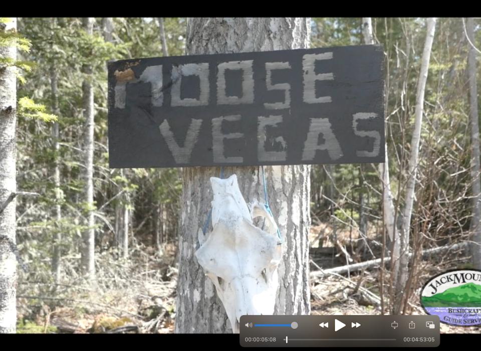 Tour Of Moose Vegas   JMB Vlog 123