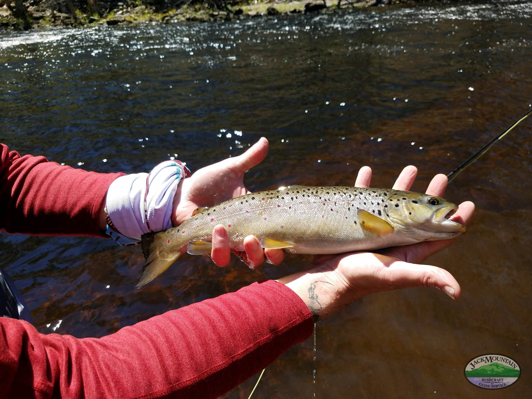 Two Spots Remaining In The Advanced Fly Fishing Course In September