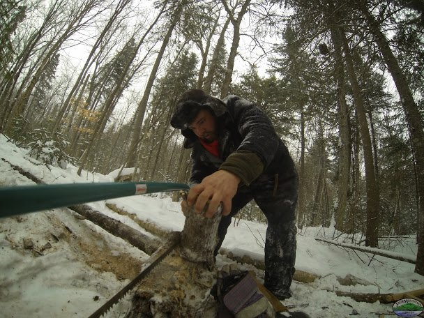 Sawing Firewood