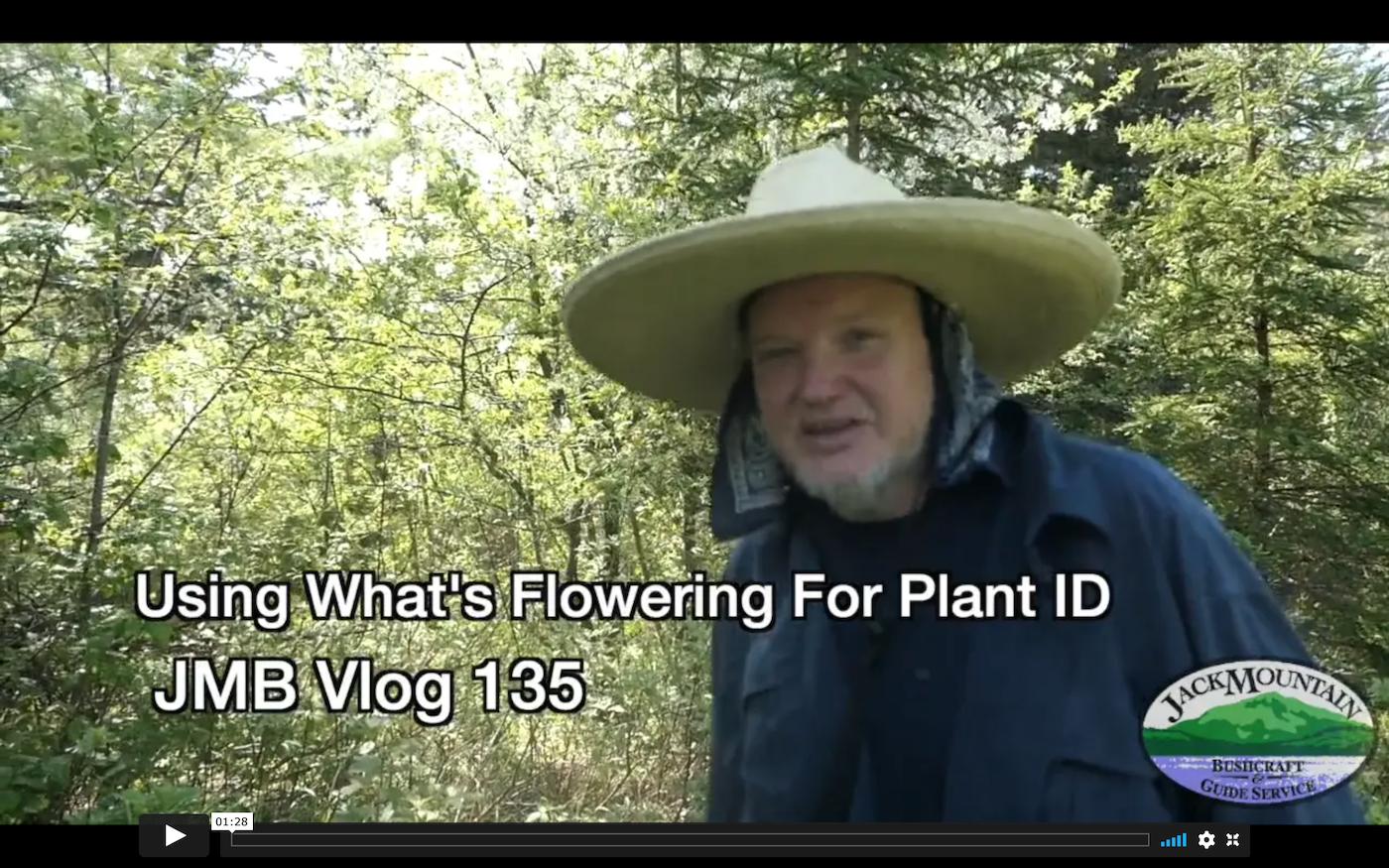 Plant ID By Flower   JMB Vlog 135