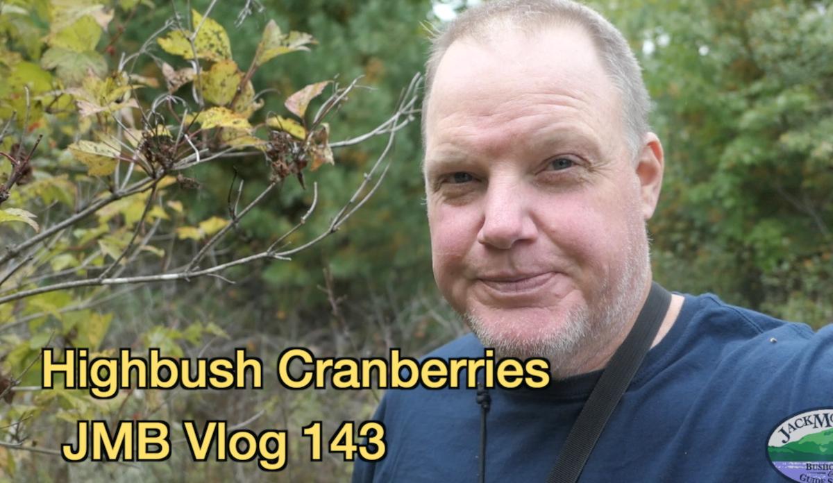 Highbush Cranberries | JMB Vlog 143